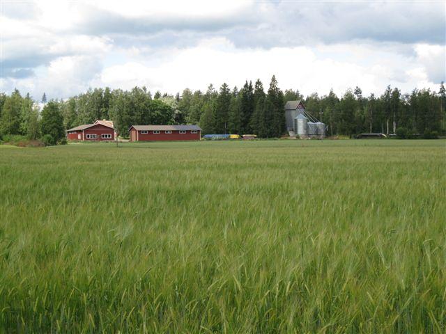 Muutoksia maaseututoimessa