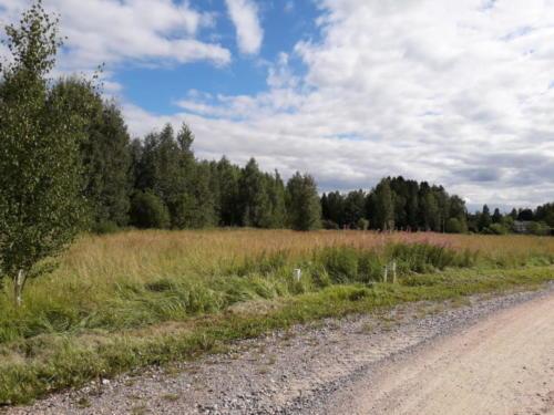 Kaijankari Haasiatie-Luhtakuja maisemaa